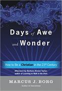 Days of awe and wonder : how to be a Christian in the twenty-first century